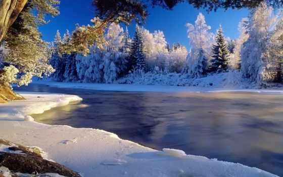 природа, красивые, winter