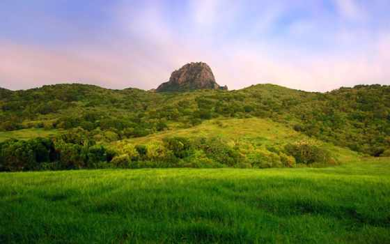 природа, national, красивые, recreation, лес, природы, площадь, пейзажи -, kenting,