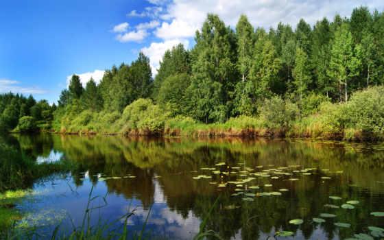лес, озеро, trees, река, summer, природа, вышивки, небо, лесу,