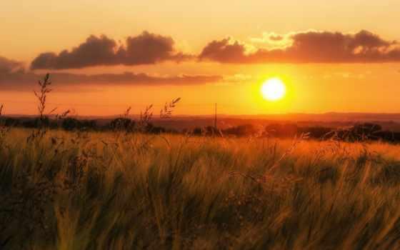 поле, закат, горизонт, трава, небо, долина, oblaka, линии, электропередачи, оранжевое,