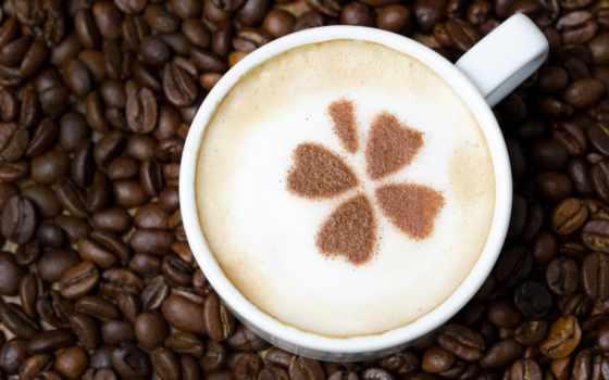 coffee, клевер, vanilla,  cappuccino,
