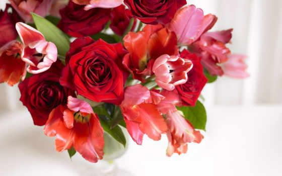 букет, розы