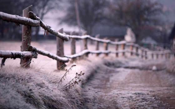 winter, тропинка, иней