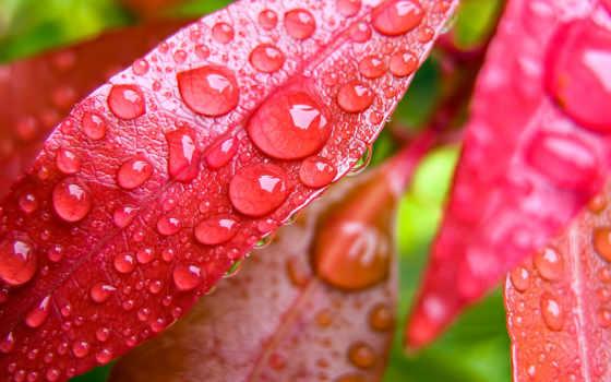 яркие, позитивные, фотки, избавиться, time, всегда, liveinternet,