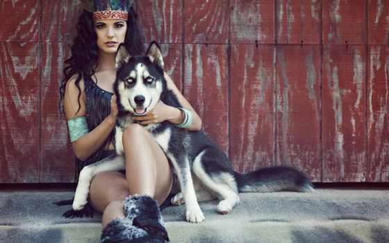 хаски, девушка, собака, what, порода, подходит, собаки, собак, тест, мне, породы,