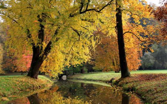 осень, чехия, республика, природа, pruhonice, rivers, изображение,