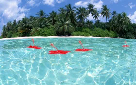 самые красивые места в мире, море, остров