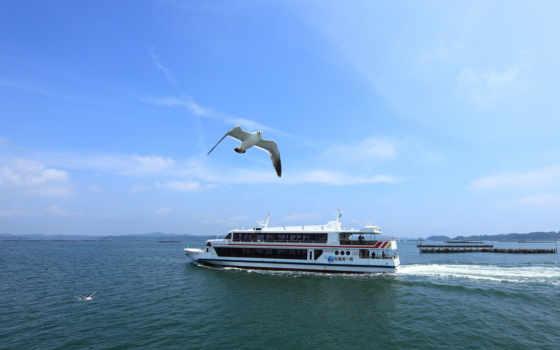 море, корабль, gulls