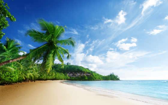 пейзаж, пляж, more