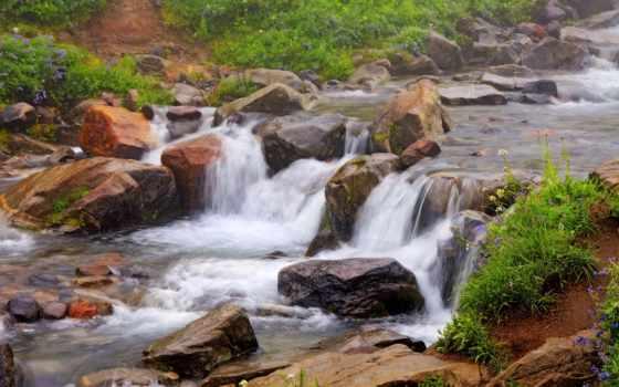 kwiatki, ржавый, wodospad, skały, trawy, pulpit, kwiaty, tapety, река,