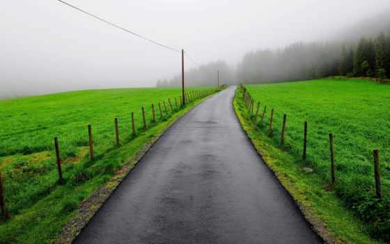 зеленые, луга, забор, подборка, туман, financial, хорошего, красивые, настроения, name,