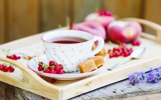 чая, утро, ягоды, красные, чая,