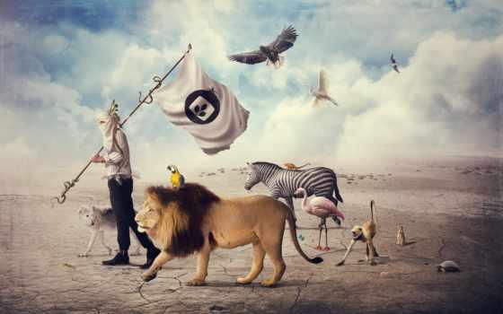 человек, лев, животные, дорога, убежище, пустыня, design, creative, you, разные, птицы, города, креативные, звери, mike, animals, harrison, appreciation,