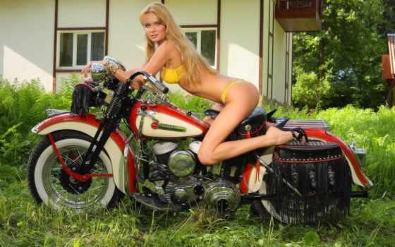 harley, davidson, мотоцикл Фон № 52791 разрешение 1920x1200