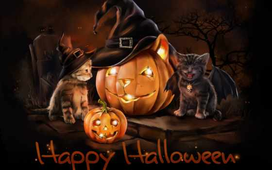 halloween, об, pinterest, cats, more, кот, see, ideas, images, save,
