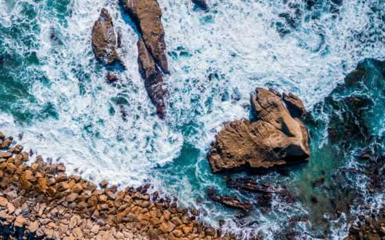 взгляд, photography, глаз, птица, море, rock, free, дневной, ocean,