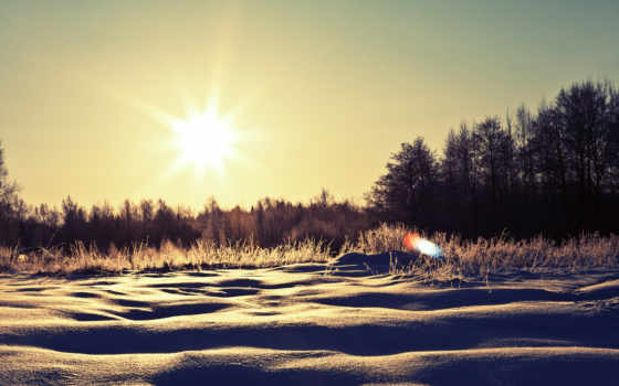 winter, картинка, sunny, nature, snow, schnee, bume, wintertag,