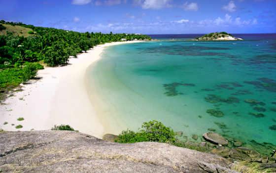 остров, ящер, день, тур, cairns, австралия, queensland, resort,