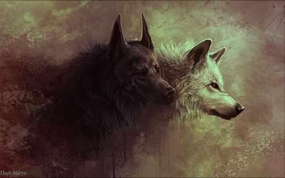 mnie, dowodząc, wrócę, watahą, pinterest, wilkom, pożarcie, rzuć, том,
