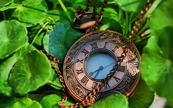 time, pocket, user, тематика