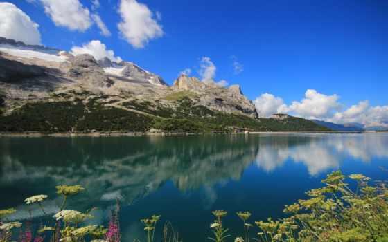 italian, озеро, fedaia, lago, горы, растения, количество, plants, красивый,