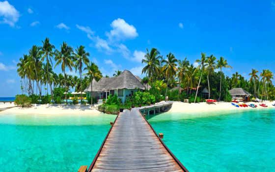 природа, tropics, море, пальмы, побережье, tropical, trees, природы, заставки,