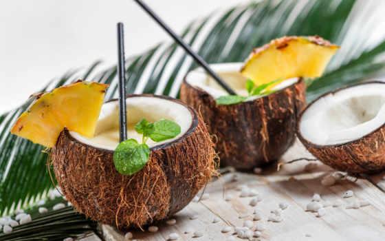 кокосовый, palm, вырасти, растение, плод, семья