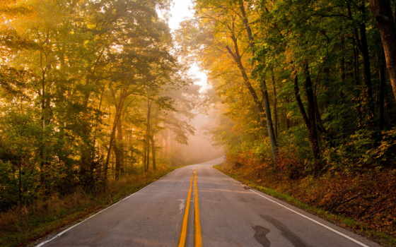 дорога, пейзаж Фон № 33594 разрешение 1920x1200