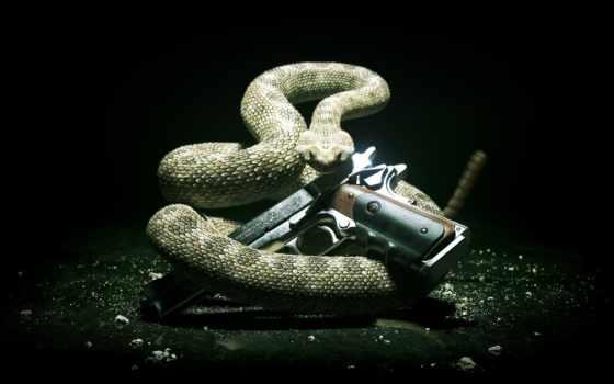 guns, hitman, snake