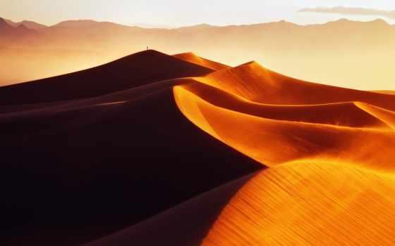 пустыня, барханы, песок, мужчина, links, утро, свет, золотые,