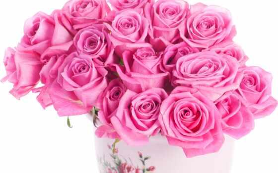 роза, розовый, цветы, букет, ваза, png