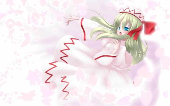 lily, white