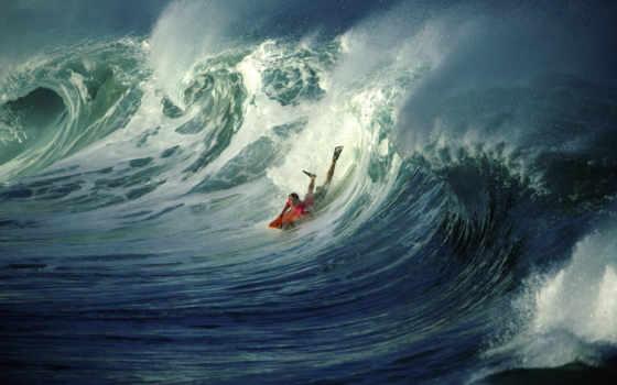 surfing, ecran, desktop