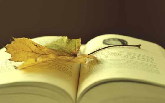 книга, красивые, книги, настроения, осень, обсуждение, нажатии,