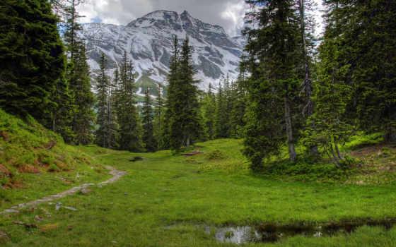 австрия, горы, нояб