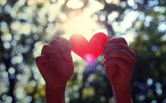 сердце, бумажное, руках,