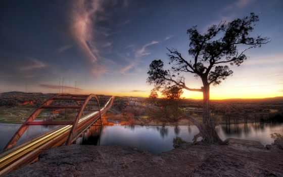 дерево, мост