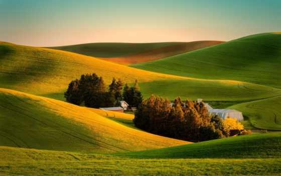 поле, рейтингу, ферма