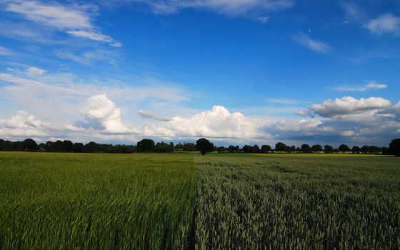 rezreshenie, tapety, campo, clouds, landscape, небо, sfondi, поле, desktop,