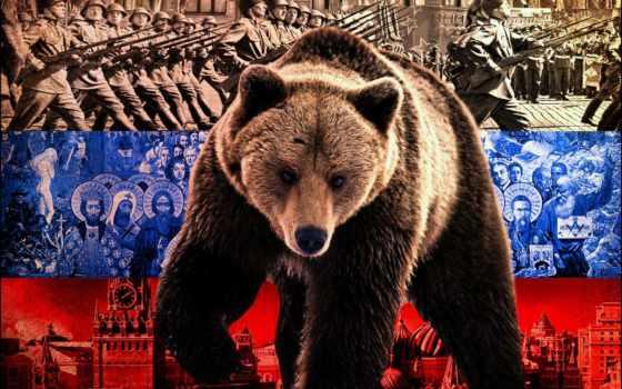 медведь, russian, флаг, mobile, телефон, policy, норма, символ, медведем,