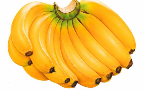 бананы, банан, они