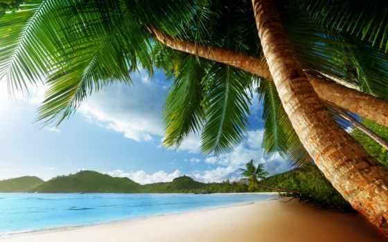море, пляж, oblaka, широкоформатные, красивые, песок, природа, landscape, небо, часть, бесплатные,