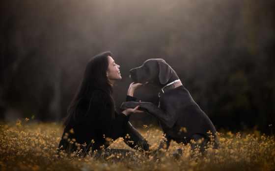 настроение, девушка, darkness, martha, собака, друг, друзья, дружба