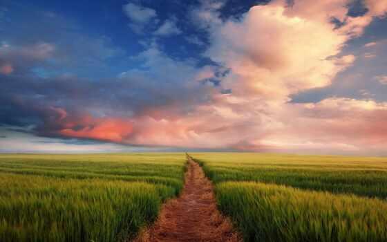 дорога, дороги, бесконечная, поле, дорогу, разных, разрешениях, edge,