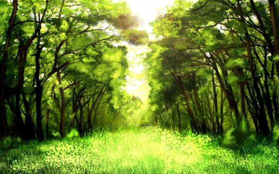 lyrics, лес, деревя