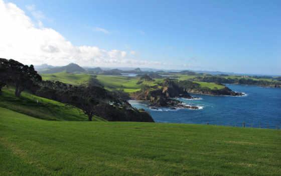 трава, газон, море