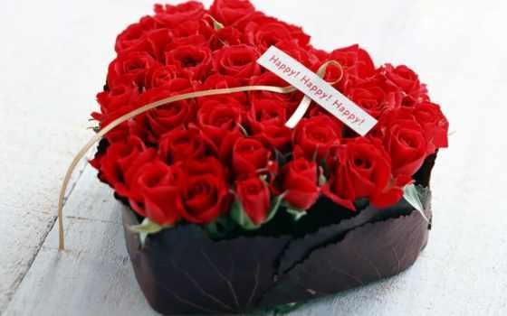 martha, цветы, розы