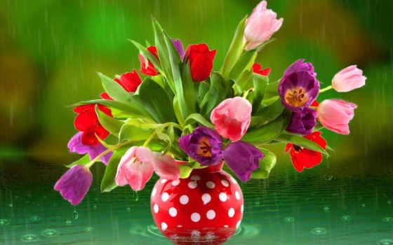 тюльпаны, букет, красивые, water, ваза, дождь, цветы, капли,