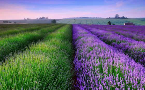 excelent, landscapes