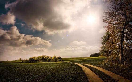 дорога, лес, поле